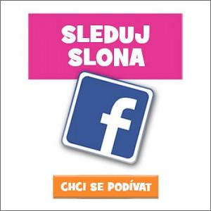 Sleduj Slona