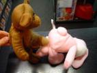 Plyšový růžový zajíc s penisem