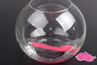 Silikónový vibrátor Divine G-Vibe, v nádobe s vodou, staršie ružová verzia
