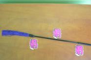 Korbáče fialové mini