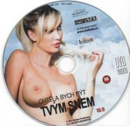 DVD Chtěla bych být tvým snem - disk